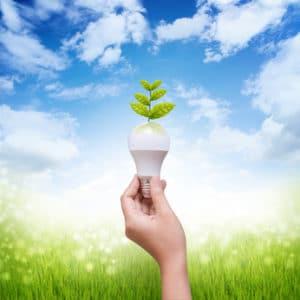 Vero Beach Eletrical, energy efficincy, install lighting, rewire your home