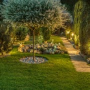 light up your garden by vero beach electrical